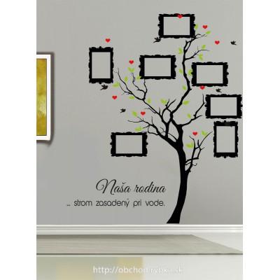 Nálepka na stenu Strom sadený pri vode, rodokmeň, rámiky 9 x 13 cm