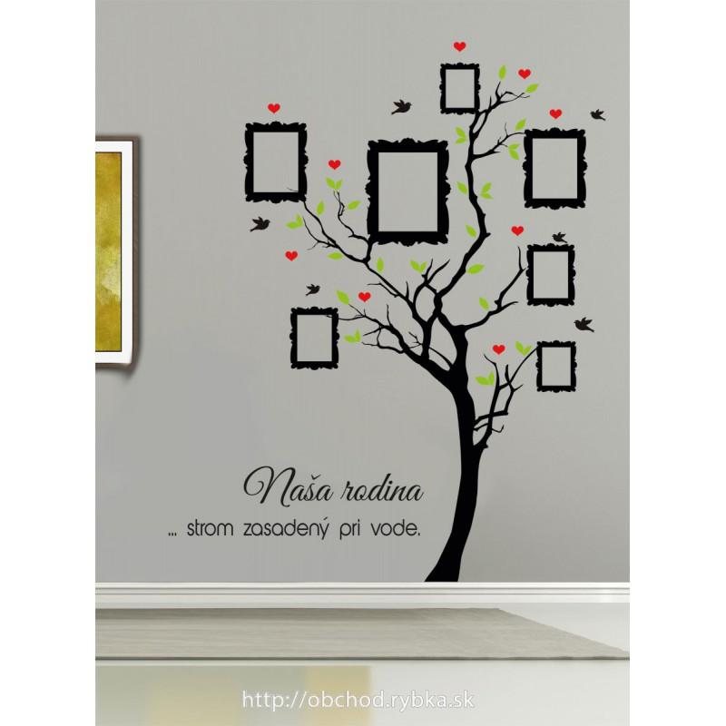 Nálepka na stenu Strom sadený pri vode, rodokmeň, rôzne veľkosti rámikov